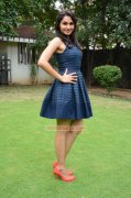 Andrea Jeremiah Indian Actress 2015 Wallpapers 3228
