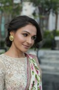 Andrea Jeremiah Malayalam Actress Recent Images 5562