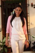 Gallery Andrea Jeremiah Malayalam Movie Actress 7006