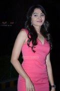 Malayalam Actress Andrea Jeremiah Photos 1435