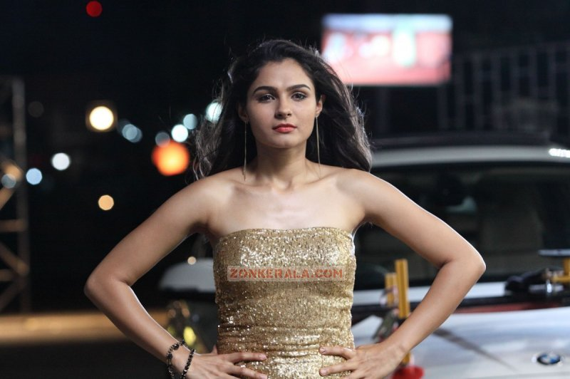 Malayalam Movie Actress Andrea Jeremiah 2015 Photos 8298