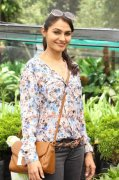 Malayalam Movie Actress Andrea Jeremiah New Picture 5496