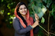 Recent Wallpapers Anu Sithara 8034