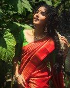Malayalam Actress Anupama Parameswaran Sep 2020 Photo 4743