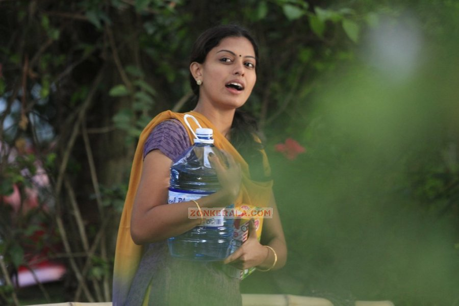 Actress Anusree Nair Photos 2249