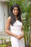 Malayalam Actress Archana Kavi 7894