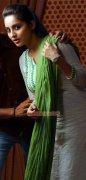 Latest Galleries Malayalam Heroine Bhama 434