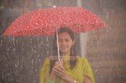 Actress Bhavana Photos 141