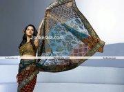 Actress Bhavana Photos In Saree 4