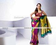 Actress Bhavana Photos In Saree 6