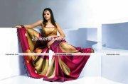 Actress Bhavana Photos In Saree 7