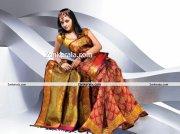 Actress Bhavana Photos In Saree 8