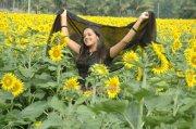Bhavana 4059