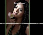 Bhavana New Photoshoot Picture11
