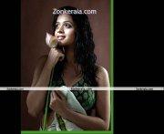 Bhavana New Photoshoot Picture12