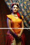 Bhavana New Photoshoot Picture3