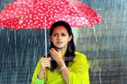Bhavana Photos 6012