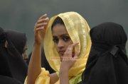 Bhavana Stills 3806