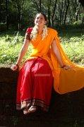 Bhavana Stills 4119