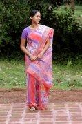 Bhavana Stills 6260