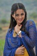 Feb 2015 Image Film Actress Bhavana 8600