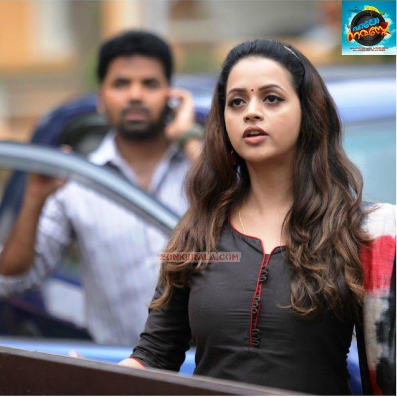 Latest Gallery Bhavana Film Actress 5103