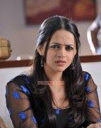 Latest Pictures Bhavana Malayalam Movie Actress 7151