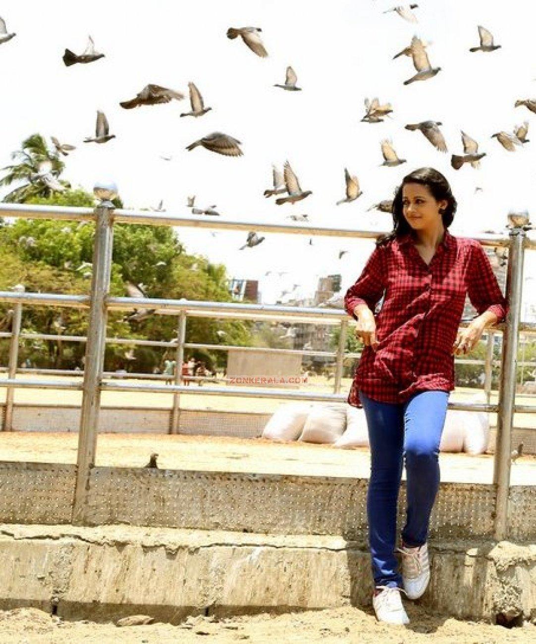 Malayalam Actress Bhavana 6915
