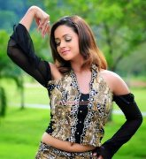 New Galleries Bhavana Actress 6130