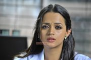 Still Bhavana Indian Actress 1463