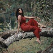 2021 Wallpaper Divya Pillai Movie Actress 4517