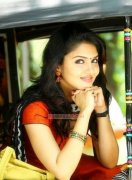 Malayalam Heroine Gayathri Suresh 2017 Pics 8099