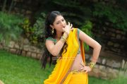 Actress Haripriya 8647