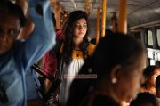 South Actress Madonna Sebastian Wallpaper 3791