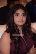 Latest Images Manjima Mohan Malayalam Movie Actress 8809