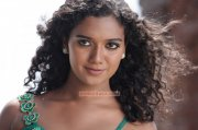 Marina Michael Kurisingal South Actress New Wallpapers 4166