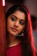 Malayalam Actress Meera Nandan Photos 2120