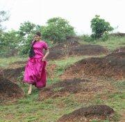 Malayalam Actress Meera Nandan Photos 4508
