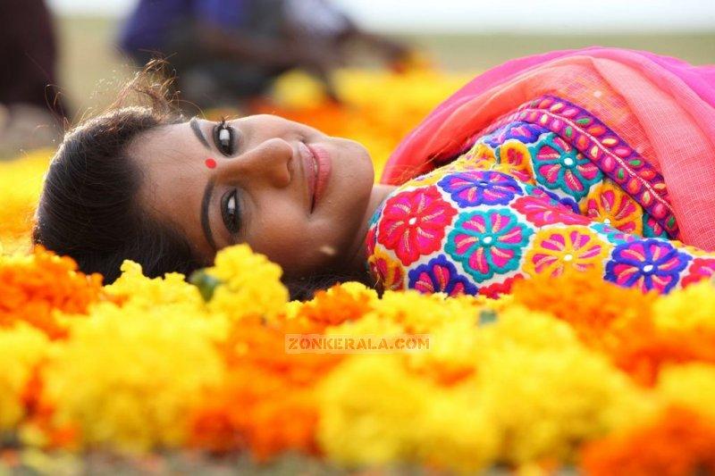Malayalam Actress Meera Nandan Stills 5887