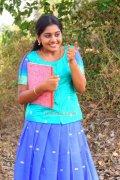 Meera Nandan 3457