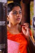 Meera Nandan 6243