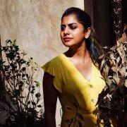 Meera Nandan Malayalam Heroine Gallery 8265