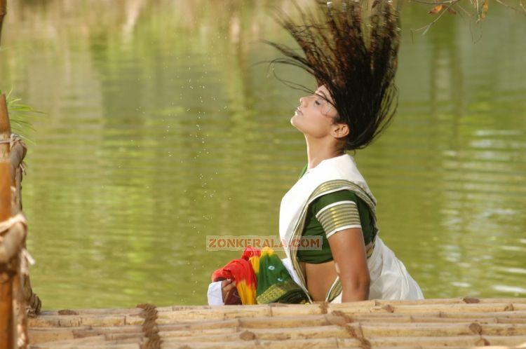 Actress Meera Vasudev Picture 560