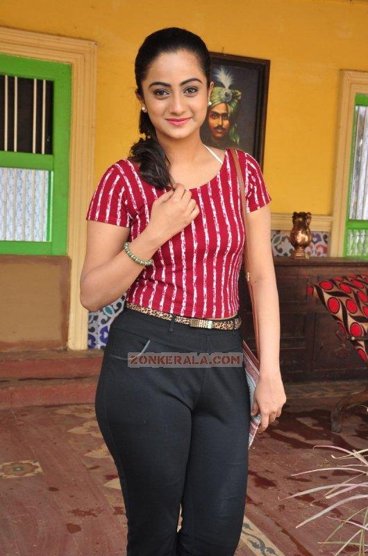 Apr 2016 Galleries Malayalam Movie Actress Namitha Pramod 8966