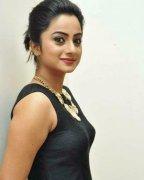 Namitha Pramod Malayalam Movie Actress Latest Galleries 747