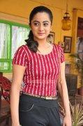 Namitha Pramod South Actress Recent Pic 5027