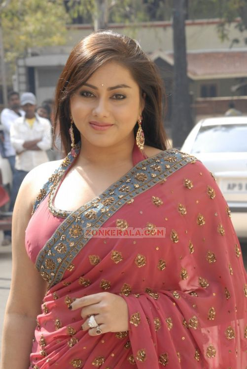 Malayalam Actress Namitha 4181