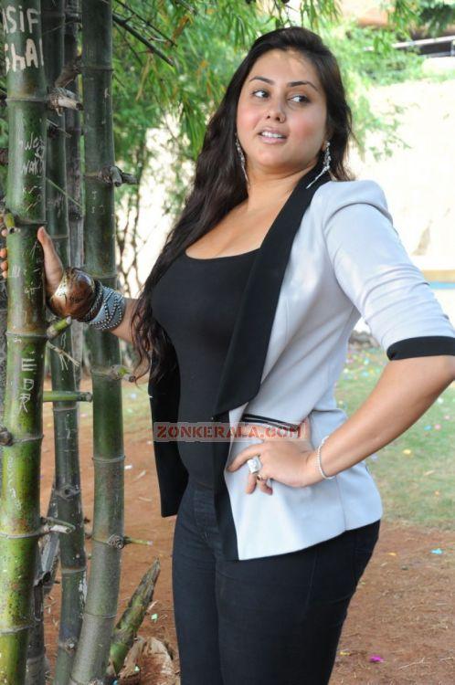 Malayalam Actress Namitha Photos 2933