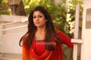 Apr 2015 Albums Nayantara Actress 676