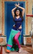 Malayalam Actress Nayantara 6149